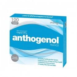 Anthogenol 高浓度花青素葡萄籽月光宝盒 100片