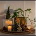Ecoya-Lotus Flower Fragranced Diffuser 200ml