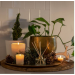 Ecoya-French Pear Fragranced Diffuser 200ml