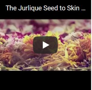 The Jurlique Seed to Skin Journey